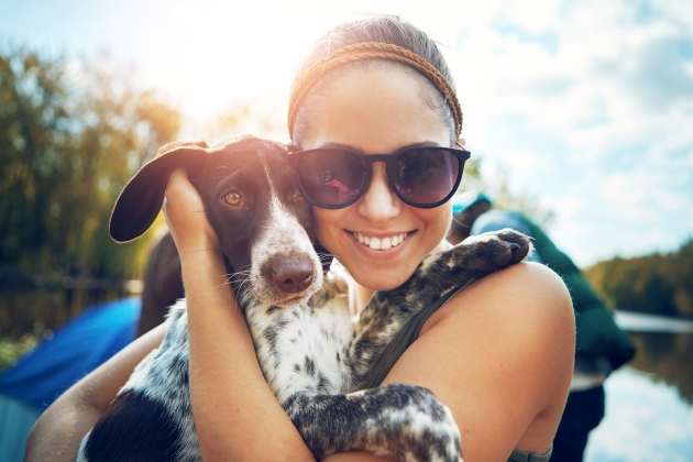 Protecting your pet in the summer heat