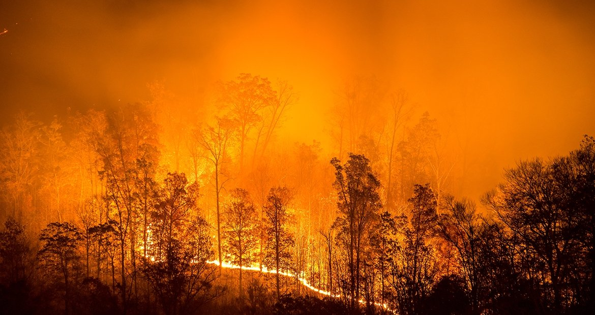 Wildfire Season And Planned Power Outages | Cummins Inc